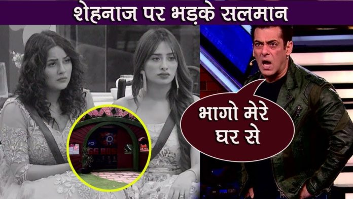 Bigg Boss 13 Today Episode Written Update 11 January 2020, Ashim did Myra's acting, This will be the first time in the history of Bigg Boss, Salman Khan rages on Shahnaz
